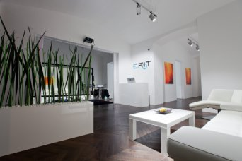 E-Fit Studio Vienna